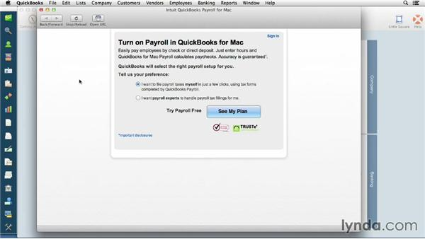 Understanding payroll options: QuickBooks for Mac Essential Training
