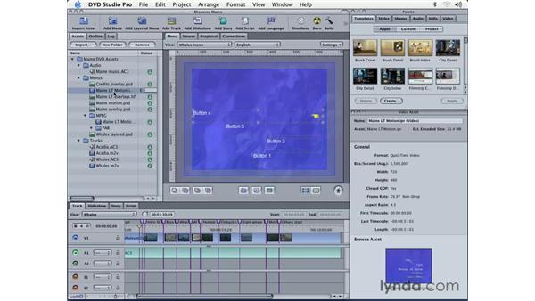 creating motion menus: DVD Studio Pro 3 Essential Training