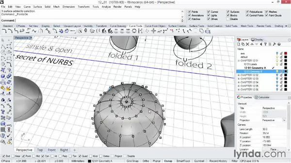 Working with NURBS, seams, and avoiding the pinch: Rhino 5 Essential Training