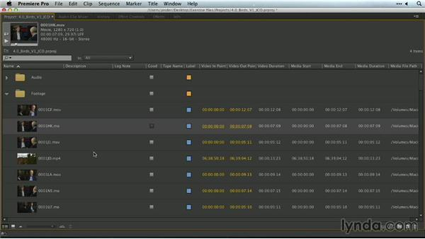 Organizing assets in and out of Adobe Premiere Pro: Premiere Pro Guru: Organizing Assets