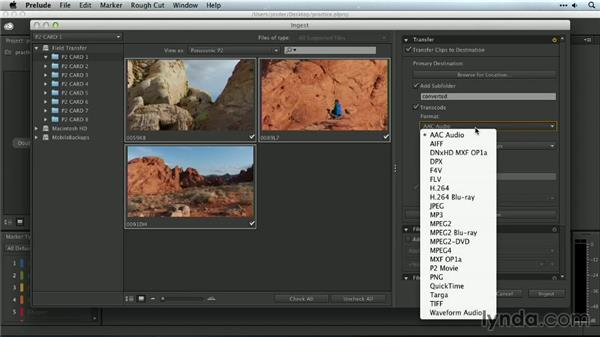 Determining the best import method for your workflow: Premiere Pro Guru: Organizing Assets