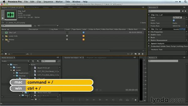 Useful keyboard shortcuts for import: Premiere Pro Guru: Organizing Assets