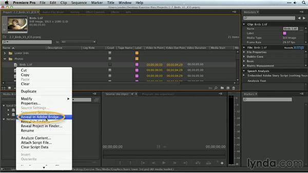 When to use Bridge: Premiere Pro Guru: Organizing Assets
