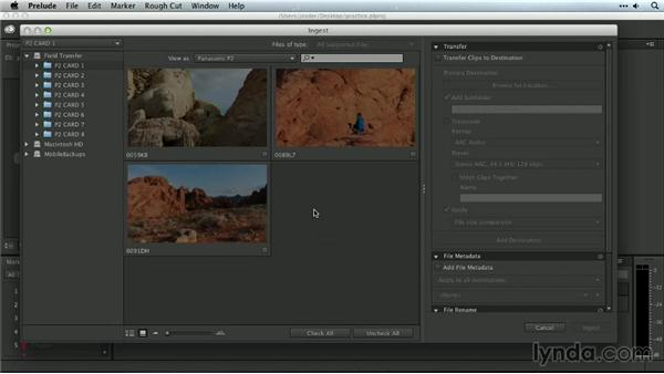 Performing a verified card transfer with Prelude: Premiere Pro Guru: Organizing Assets