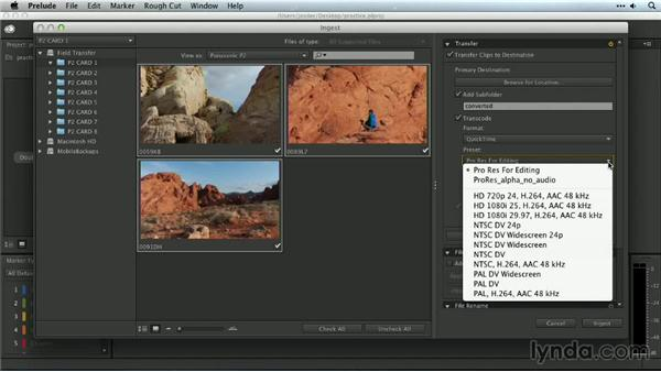 Transcoding media with Prelude: Premiere Pro Guru: Organizing Assets
