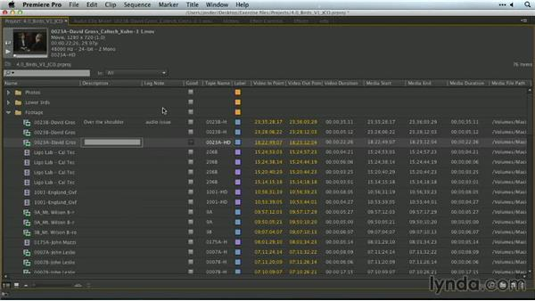 Adding metadata in the Project panel: Premiere Pro Guru: Organizing Assets