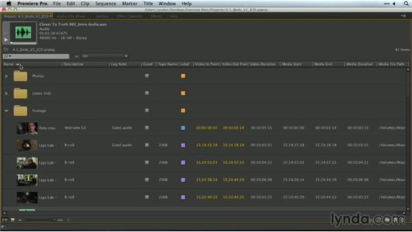 Sorting and sifting through clips: Premiere Pro Guru: Organizing Assets