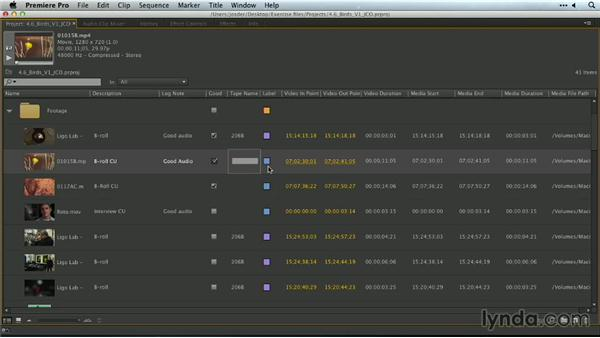Organizing media with labels: Premiere Pro Guru: Organizing Assets