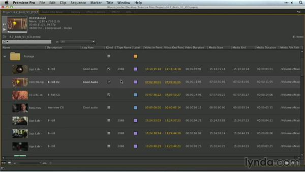 Selecting a label group: Premiere Pro Guru: Organizing Assets