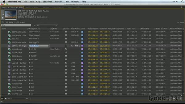 Working with bins: Premiere Pro Guru: Organizing Assets