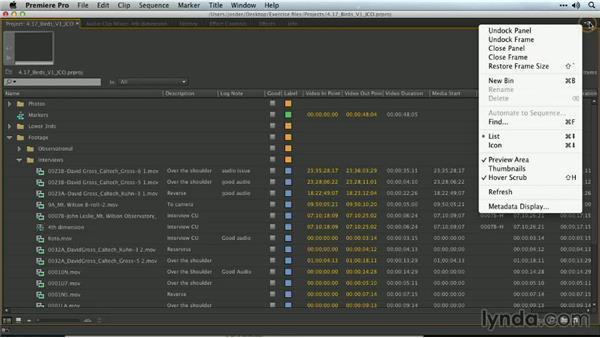 Customizing columns: Premiere Pro Guru: Organizing Assets