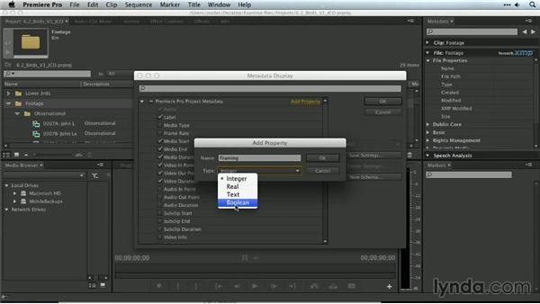 Customizing headings and displays: Premiere Pro Guru: Organizing Assets