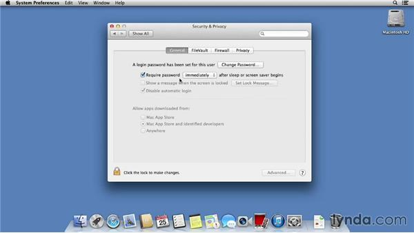 Passwords and iCloud Keychain: Mac OS X Mavericks Essential Training
