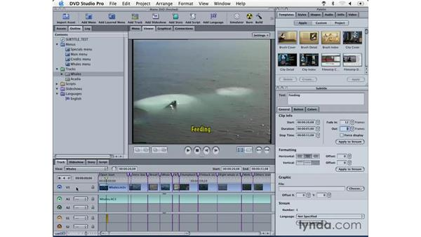 creating subtitles: DVD Studio Pro 3 Essential Training