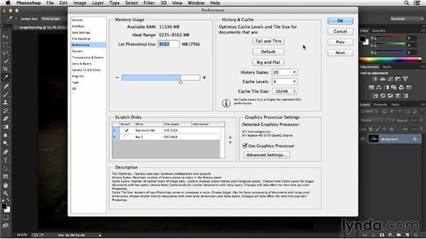 Managing cache levels and history states: Photoshop Insider Training: Optimizing Photoshop's Performance