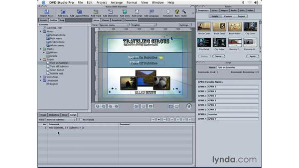 using scripts: DVD Studio Pro 3 Essential Training