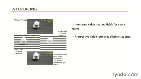 Interlacing: Premiere Pro Guru: Outputs and Media Encoder