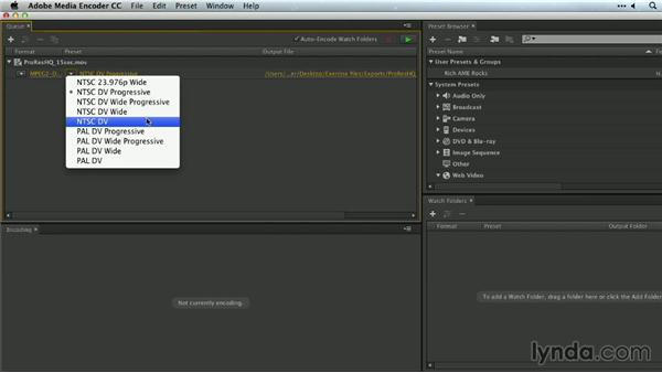 MPEG-2 for DVD and Blu-ray: Premiere Pro Guru: Outputs and Media Encoder