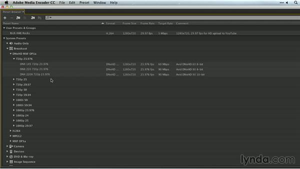 Broadcast-format outputs: Premiere Pro Guru: Outputs and Media Encoder