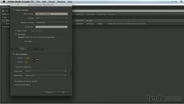 Custom settings: Premiere Pro Guru: Outputs and Media Encoder