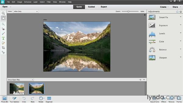 Elements overview: Photoshop Elements 12 Essential Training