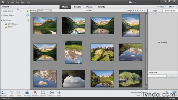 Working with catalogs: Photoshop Elements 12 Essential Training