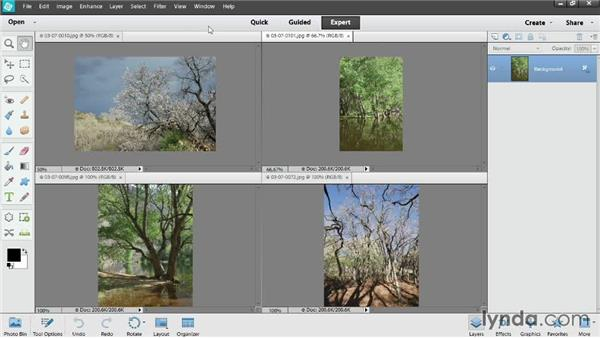 Viewing multiple documents: Photoshop Elements 12 Essential Training