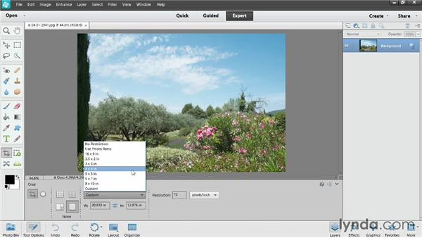 Cropping photos: Photoshop Elements 12 Essential Training
