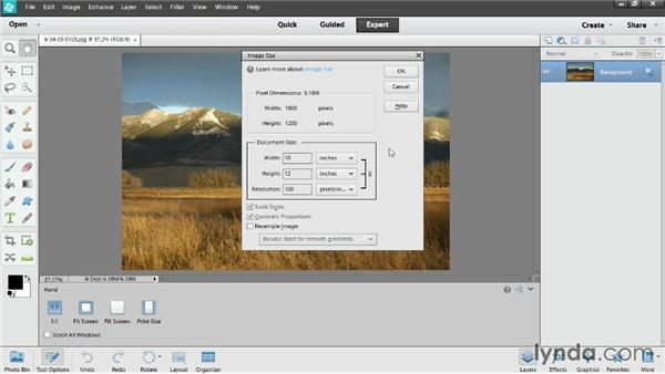 Resizing photos for print: Photoshop Elements 12 Essential Training