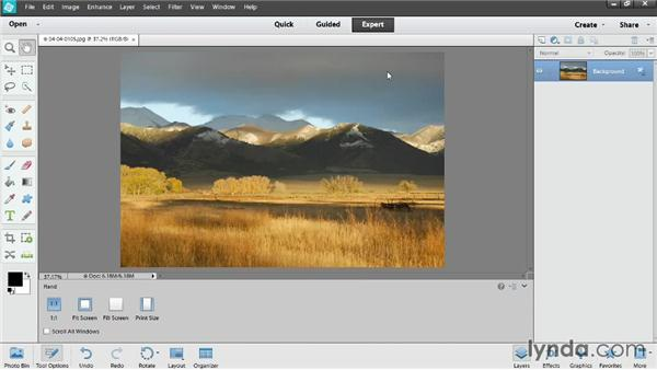 Resizing photos for the web: Photoshop Elements 12 Essential Training