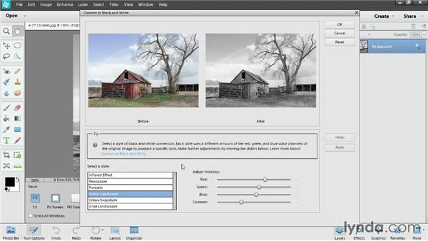 Converting to black and white: Photoshop Elements 12 Essential Training