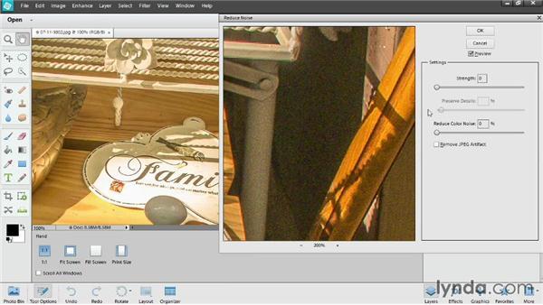 Reducing digital noise: Photoshop Elements 12 Essential Training