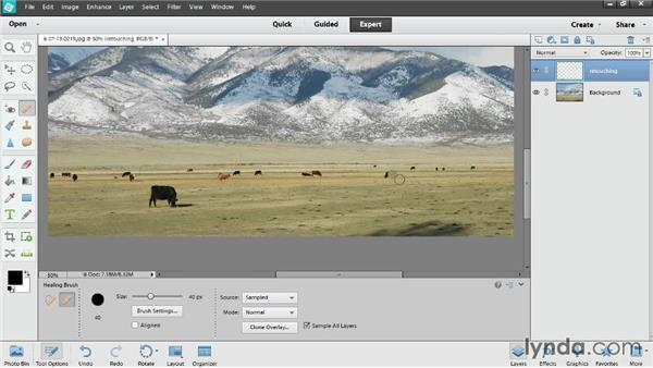 Retouching with the Healing and Clone Stamp tools: Photoshop Elements 12 Essential Training