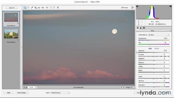 Touring the Camera Raw interface: Photoshop Elements 12 Essential Training