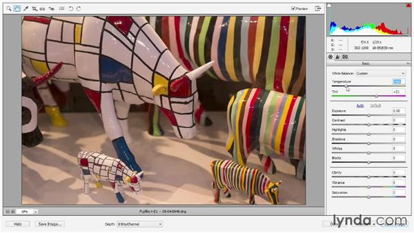 Setting white balance: Photoshop Elements 12 Essential Training