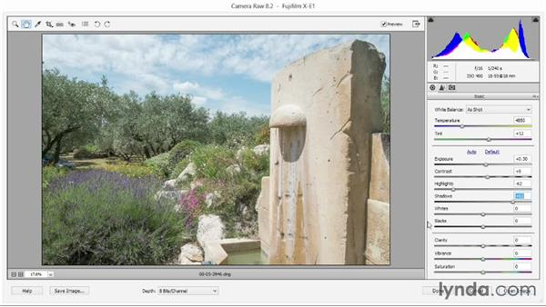 Adjusting lighting and color with Basic sliders: Photoshop Elements 12 Essential Training