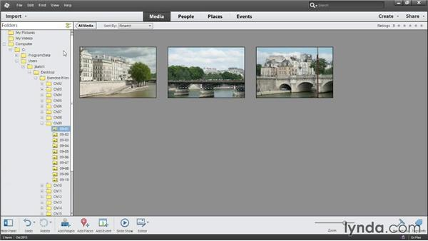 Overview of the Organizer: Photoshop Elements 12 Essential Training