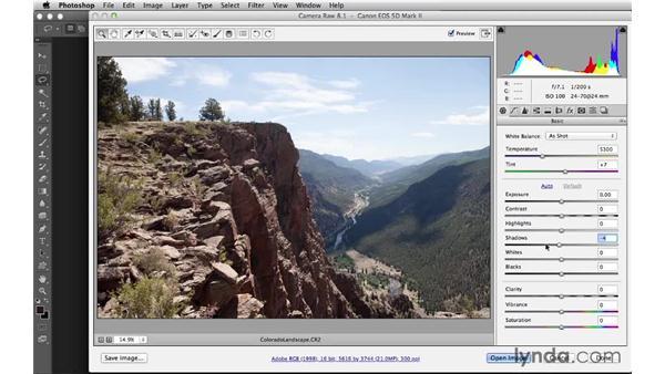 Camera Raw: Digital Matte Painting Essentials 4: Texturing