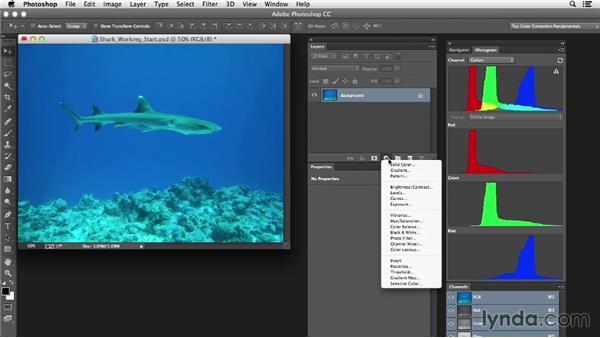 Identifying the tools and approach: Photoshop Color Correction: Extreme Color Cast