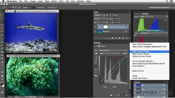 Exporting and applying a color cast adjustment on another image: Photoshop Color Correction: Extreme Color Cast