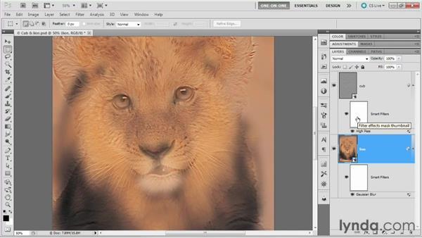 100 Creating a dual-focus hybrid image: Deke's Techniques
