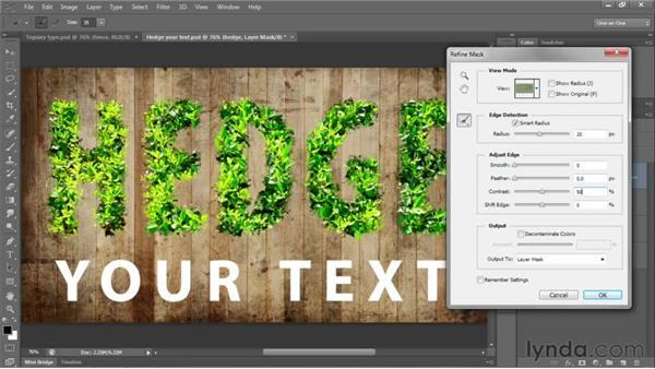 115 Creating leafy letters: Deke's Techniques