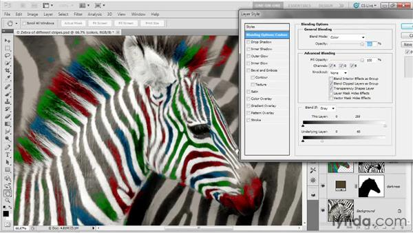 056 Coloring the stripes on a zebra: Deke's Techniques
