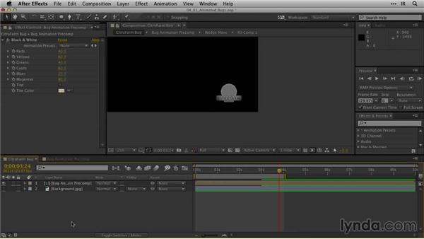 Formatting animated logo bugs: After Effects Guru: Animating Logos