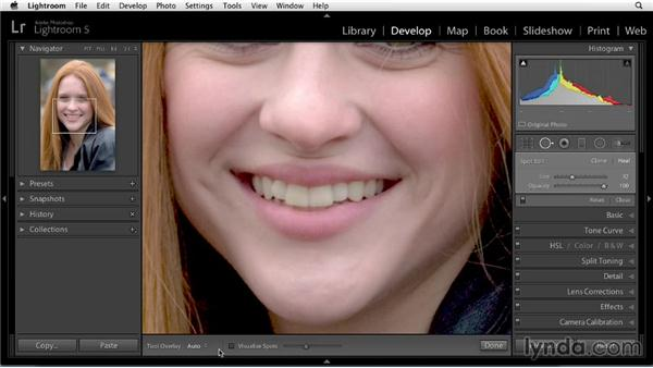 Hiding imperfections: Enhancing a Portrait of a Young Woman in Lightroom