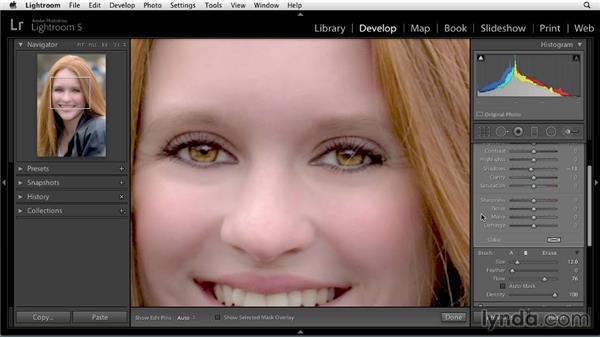 Darkening brows and lashes: Enhancing a Portrait of a Young Woman in Lightroom