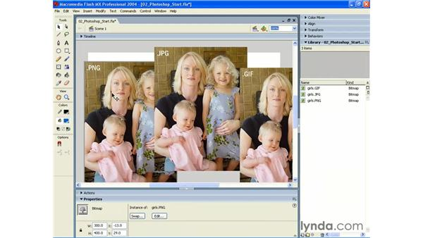 optimization settings for each bitmap: Photoshop CS and Flash MX 2004 Integration