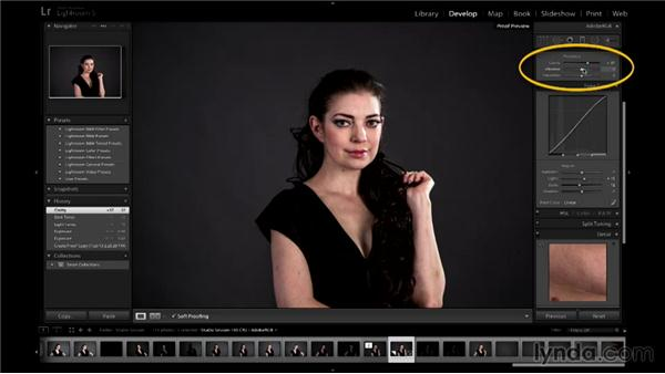 Checking the shots on a computer: Up and Running with Studio Strobes