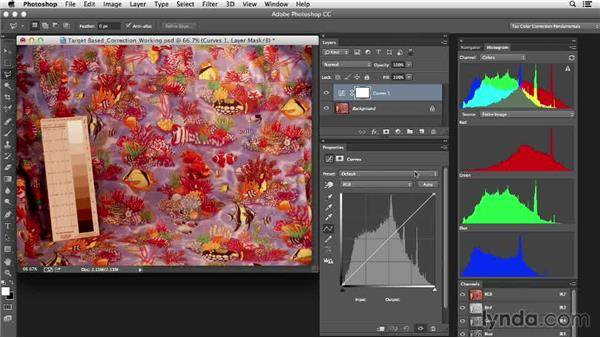 Identifying the tools and approach: Photoshop Color Correction: Target-Based Corrections