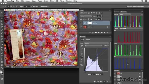 Performing target-based corrections: Photoshop Color Correction: Target-Based Corrections